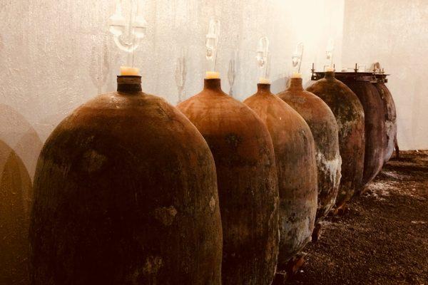 Article : Les premières cuvées labellisées VMN